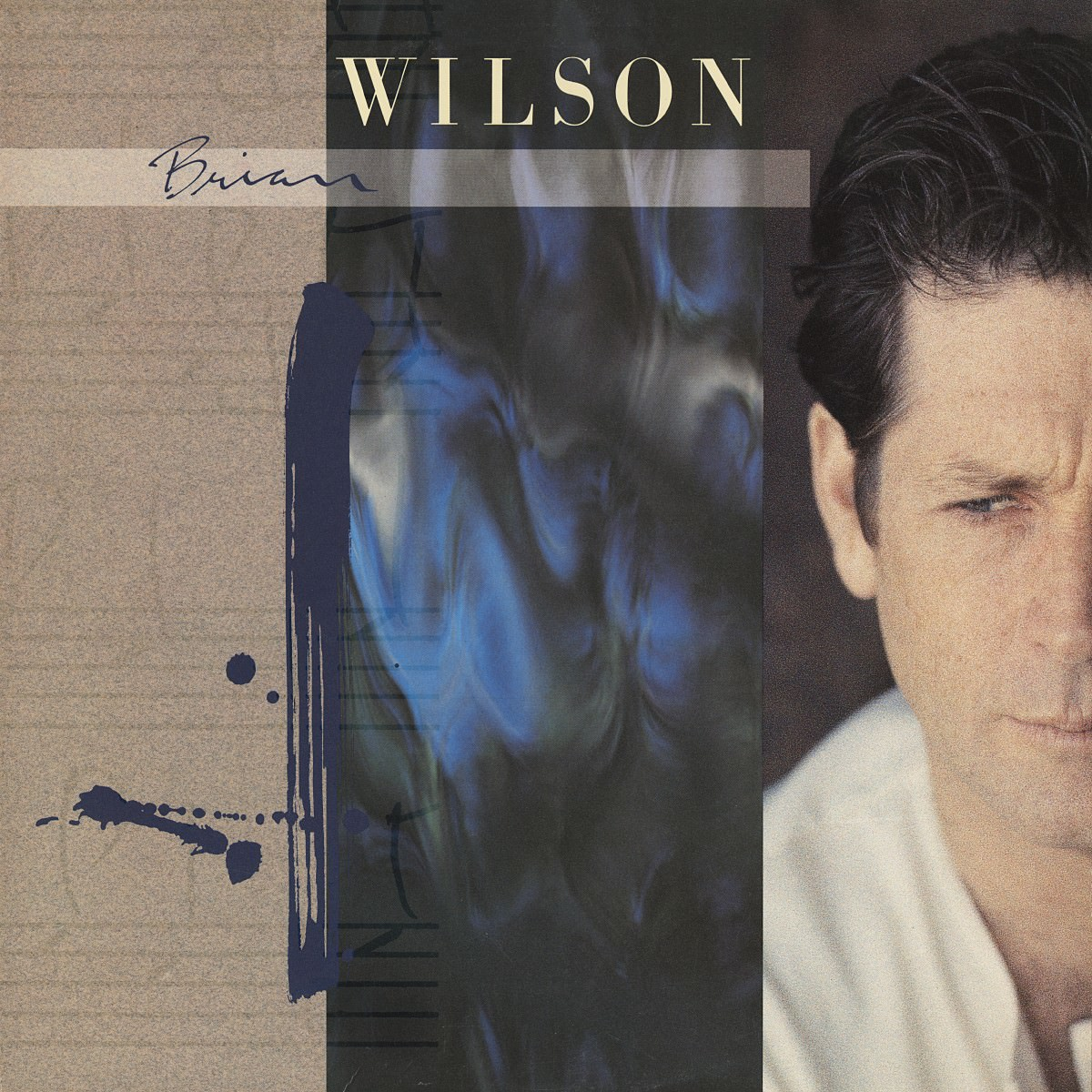 Brian Wilson (180 Gram Audiophile Blue Vinyl/Limited Edition) cover