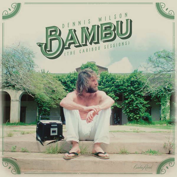 Bambu cover