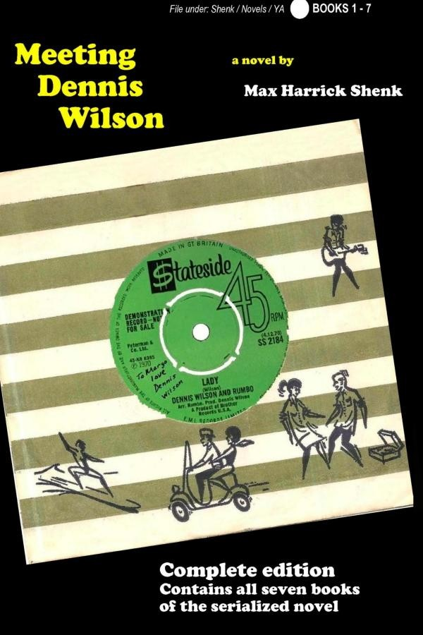 Meeting Dennis Wilson cover