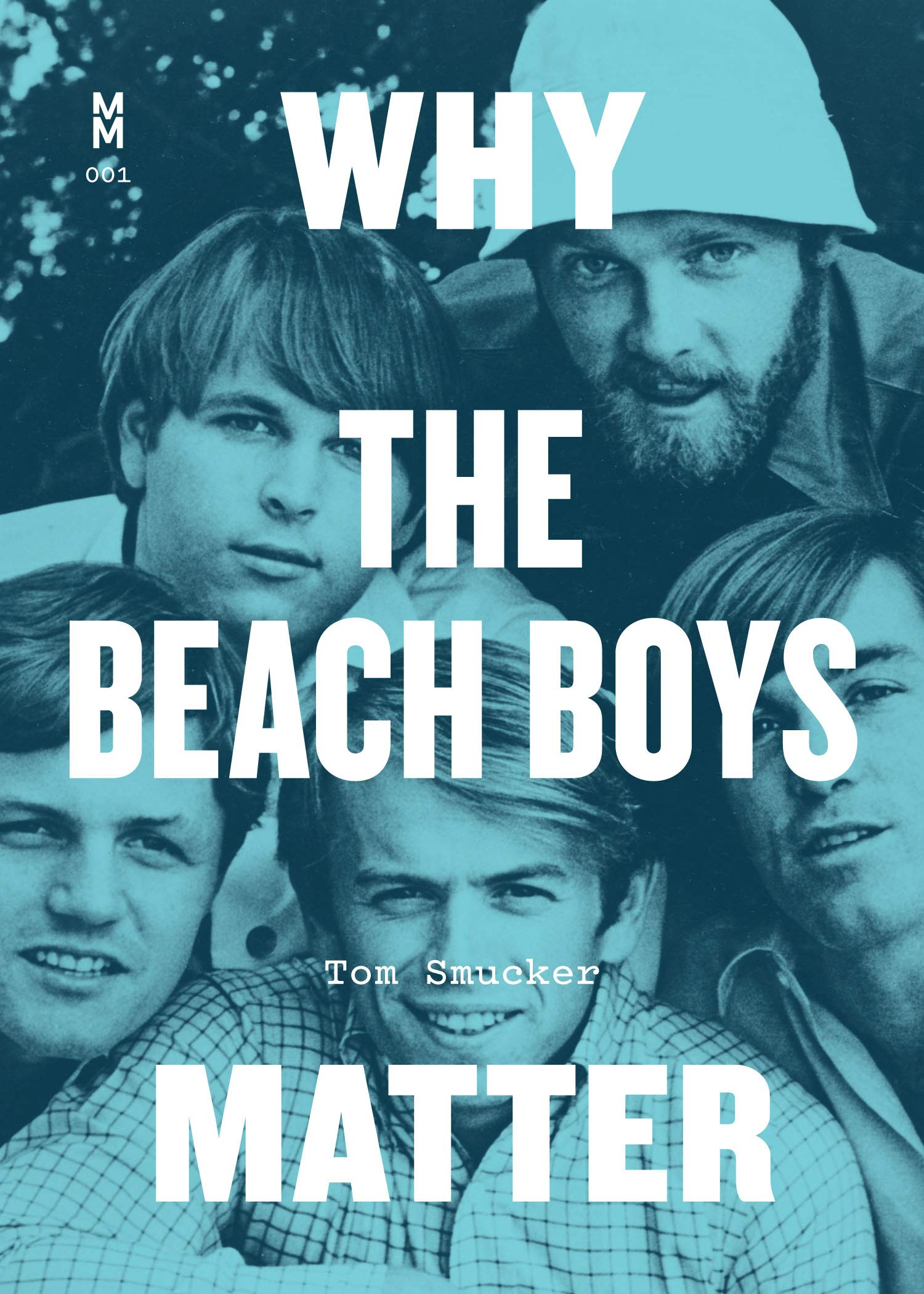 Why The Beach Boys Matter cover