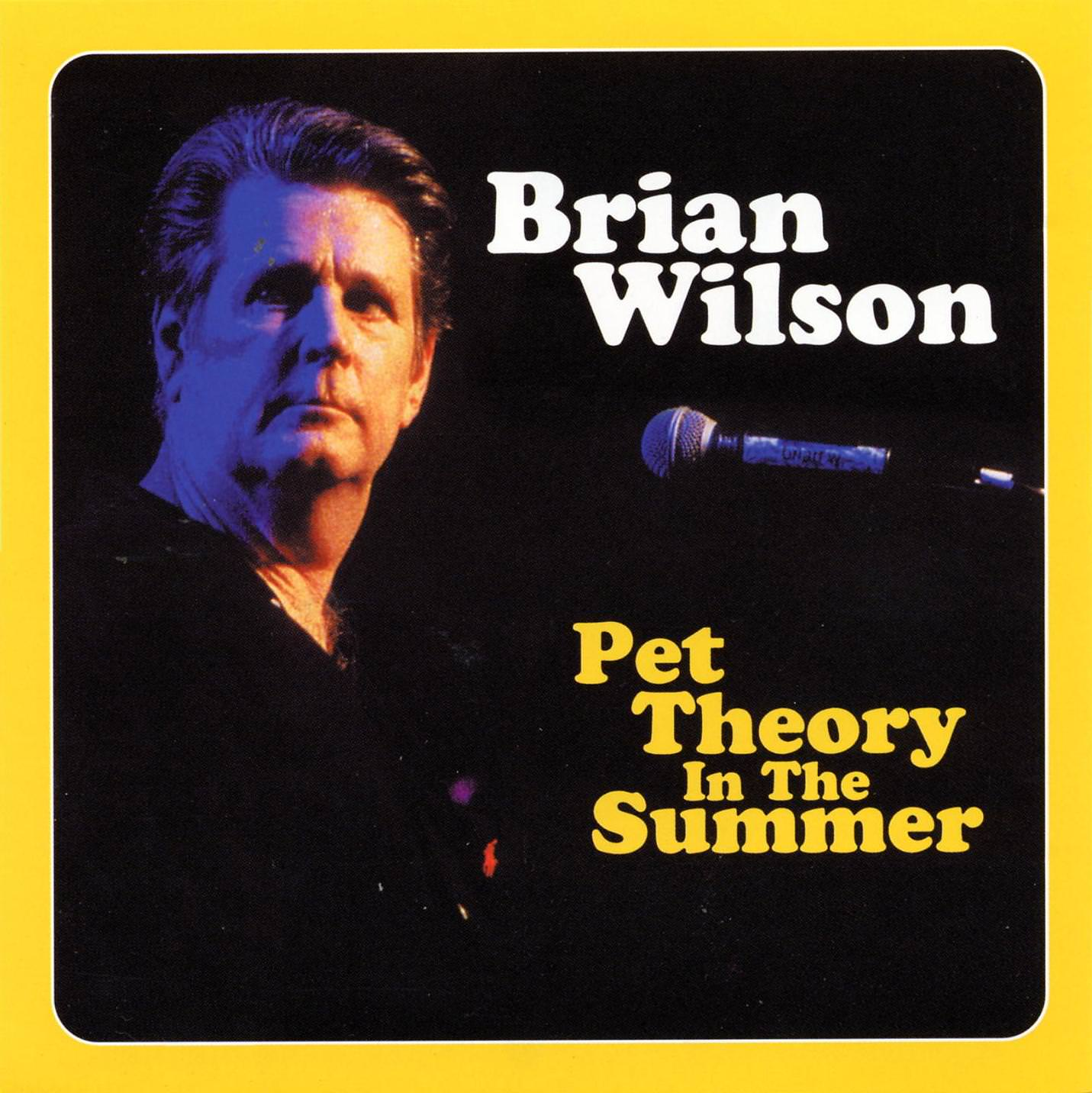 Pet Theory In The Summer cover