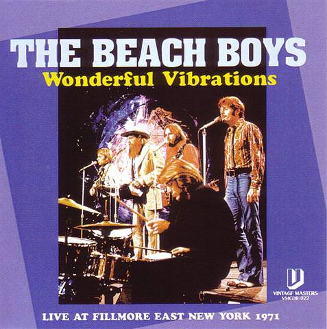 Wonderful Vibrations cover