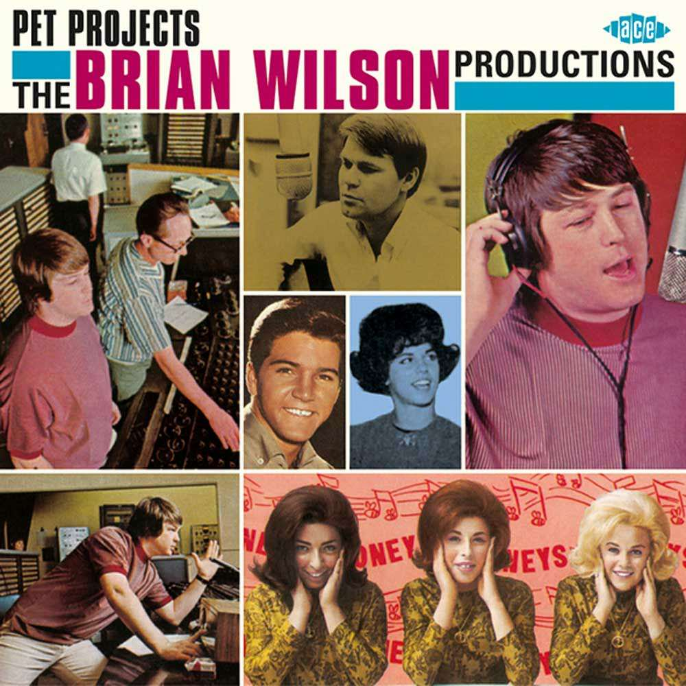 Pet Projects: The Brian Wilson Productions cover